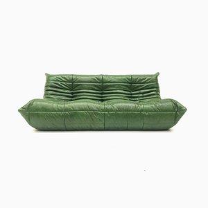 Vintage Togo Sofa aus grünem Waldleder von Michel Ducaroy für Ligne Roset