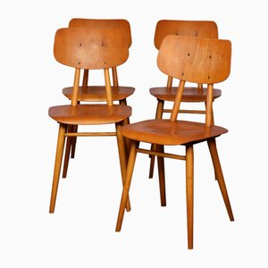 Czech Wooden Dining Chairs from TON, 1960s, Set of 4