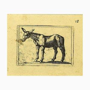 Antonio Tempesta, Mule, Etching, 1610s
