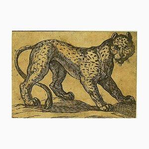 Incisione raffigurante Antonio Tempesta, la tigre, 1610s