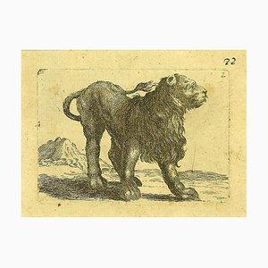 Antonio Tempesta, the Lion, Etching, 1610s