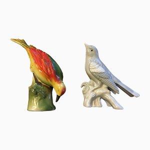 Uccelli in porcellana, anni '50, set di 2