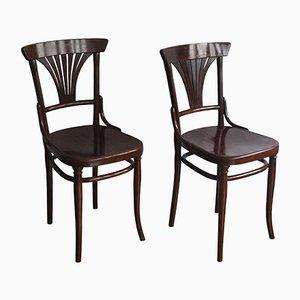 221 Esszimmerstühle von Michael Thonet für Gebrüder Thonet Vienna GmbH, 1910er, 2er Set