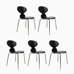 Dänische Ameisenstühle von Arne Jacobsen für Fritz Hansen, 1986, 5er Set