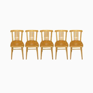 Mid-Century Lacquered Wood Dining Chairs, Set of 5