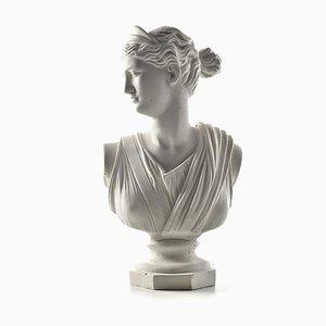 Plaster Artemis Bust