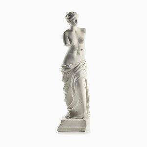 Plaster Venus De Milo