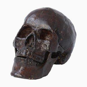 Bronze Skull Sculpture
