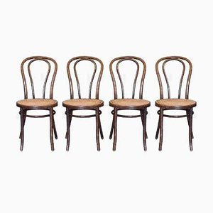 Bugholz Nr. 18 Stühle von ZPM Radomsko, 1960er, 4er Set