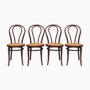 Antique No.18 Dining Chairs by Gebrüder Thonet, 1910s, Set of 4