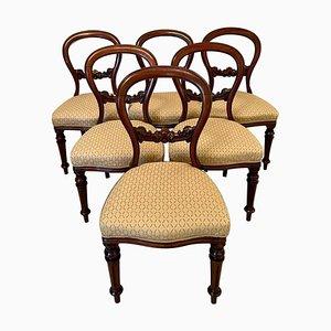 Antike viktorianische Mahagoni Esszimmerstühle mit Ballonebene, 6er Set