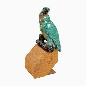 Glazed Ceramic Parrot