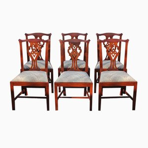 Georgian Style Mahogany Dining Chairs, 1960s, Set of 6
