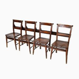 Antike C19 Stühle aus Ulmenholz