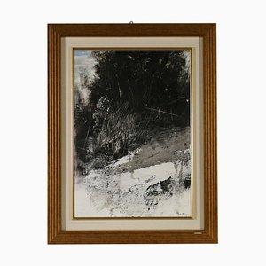 Antonio Pedretti, Landschaftsleinwand