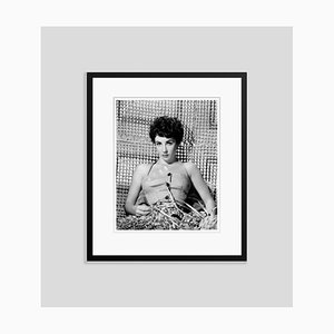 Stylish Elizabeth Taylor Archival Pigment Print Framed in Black by Everett Collection