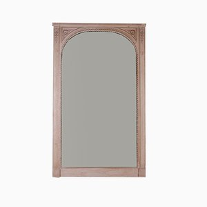 French Chateau Mirror, 1860s