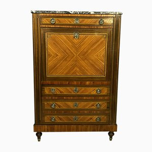 Parisian Louis XVI Secretaire with Wooden Marquetry, 1850s