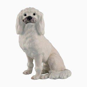 White Poodle Porcelain Figurine from Royal Copenhagen, 1920s