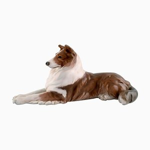Lying Collie Porcelain Figurine from Royal Copenhagen, 1920s