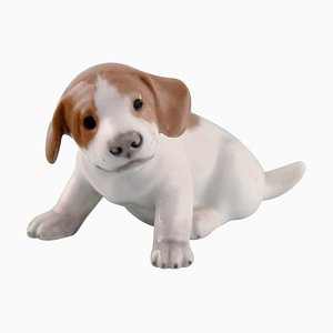 Pointer Puppy Porcelain Figurine from Royal Copenhagen, 1920s
