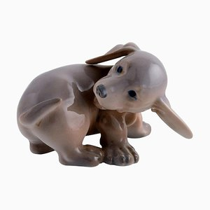 Porcelain Dachshund Puppy from Royal Copenhagen, 1920s