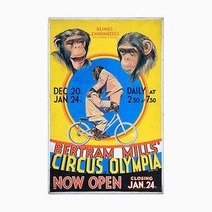 W.E. Berry, Kling's Chimpanzees Poster