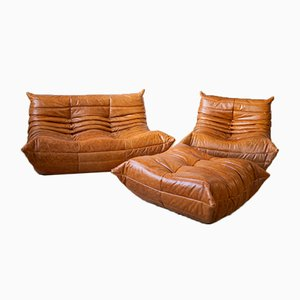 Vintage Pine Leather Togo Living Room Set by Michel Ducaroy for Ligne Roset, Set of 3