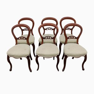 Antique Mahogany Balloon Back Dining Chairs, Set of 6