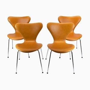 Sedie modello 3107 Seven di Arne Jacobsen, set di 6