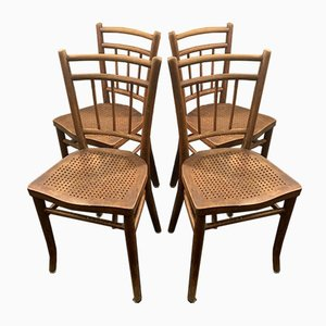 Cafe Stühle von Michael Thonet für Gebrüder Thonet Vienna GmbH, 1920er, 4er Set