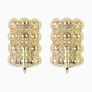 Amber Bubble Glass Sconces by Helena Tynell for Limburg, 1960s, Set of 2