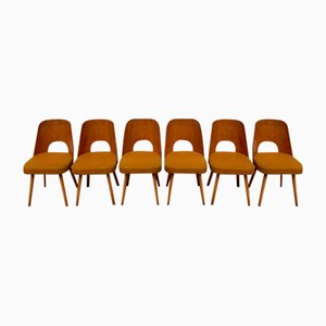 Mid-Century Dining Chairs by Oswald Haerdtl for TON, Set of 6