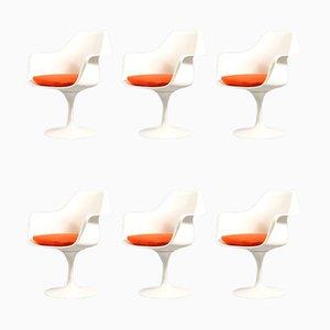 Mid-Century Tulip Chairs by Eero Saarinen for Knoll Inc. / Knoll International, Set of 6