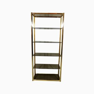 Large Brass & Smoked Glass Display Shelf, 1970s