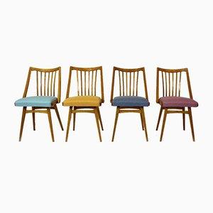 Esszimmerstühle aus Eiche von Interier Praha, 1960er, Set of 4