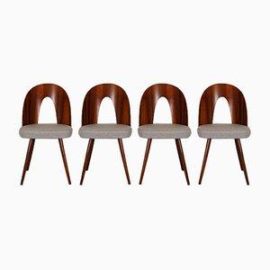 Esszimmerstühle von Antonin Suman für Mier, 1960er, Set of 4