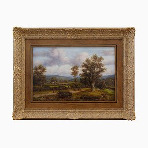 Pastoral Scene with Distant Hills by M Corper