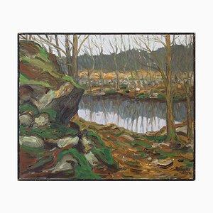 Día de marzo de the Pond in Vekerum de Ake Wickstrom