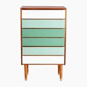 Vintage Danish Colorful Chest of Drawers, 1960s