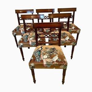 Antike Regency Mahagoni Esszimmerstühle mit Intarsien, 6er Set
