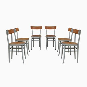 Beech Dining Chairs, 1950s, Set of 6