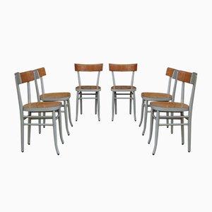Chaises de Salon en Hêtre, 1950s, Set de 6