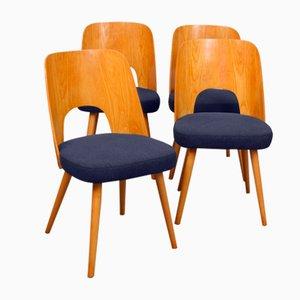 Stühle von Oswald Haerdt für Tatra Nabytok, 1950er, 4er Set