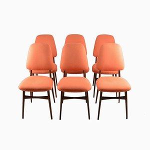 Italienische Mid-Century Esszimmerstühle, 6er Set
