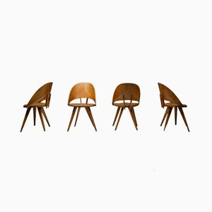 Vintage Italian Plywood Dining Chairs, Set of 6