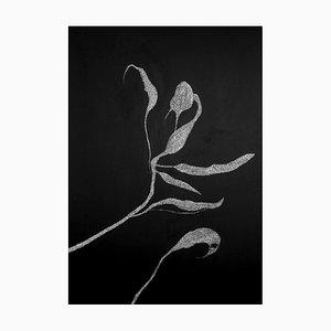 Secret Garden 03 von Alina Aldea