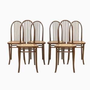 Model 644 Dining Chairs by Josef Hoffmann for Thonet, Set of 6