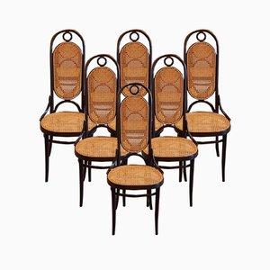 Nr. 207 R Esszimmerstühle von Michael Thonet für Thonet, 1978, 6er Set