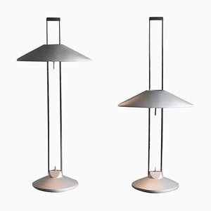 Regina Adjustable Table Lamps by Jorge Pensi, Set of 2